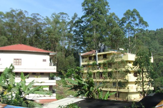 Las Palmas Munnar: backside view from the terrace