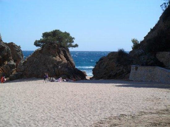 Fenals Beach : le fond de la plage