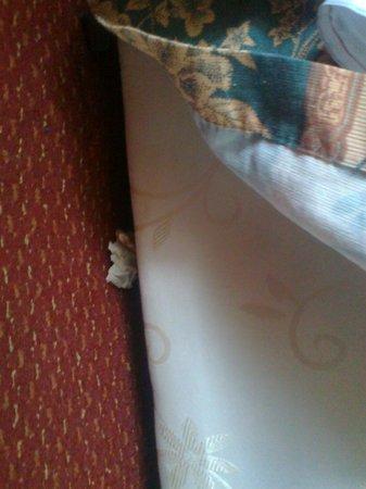 Bridge Park Hotel: pod łóżkiem