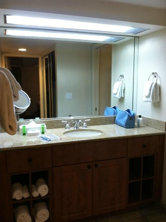 Westgate Flamingo Bay Resort: Sink/Vanity