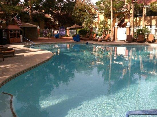 Westgate Flamingo Bay Resort: Pool