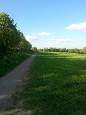 Grantchester Village: Foot path