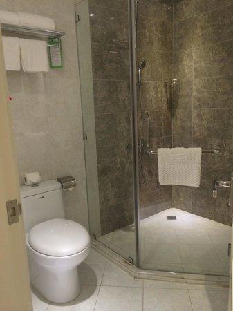 Alagon Saigon Hotel & Spa : お湯はコントロールが難しかったが、ふんだんに出ました。