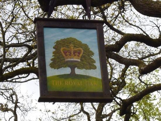 Westonbirt Arboretum : first Royal Oak?