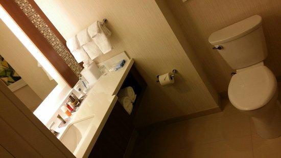 Marriott Marquis Washington, DC : King room bathroom