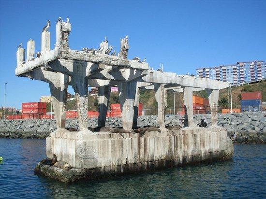 Armada chilena picture of ibis valparaiso valparaiso for Hotel ibis valparaiso