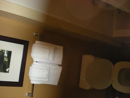 Extended Stay America - Orlando - Convention Center - Universal Blvd: Baño