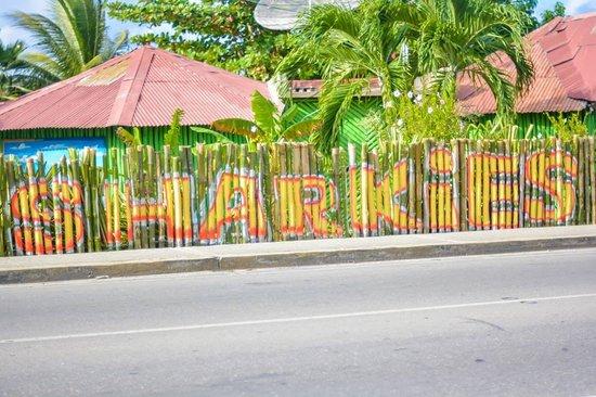 Sharkies Seafood Restaurant: Bamboo fencing