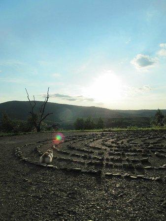 Agriturismo La Svolta : il labirinto di sassi...