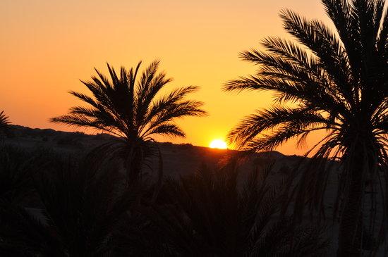 Naamani Groupe Nomadic Camp : M hamid desert