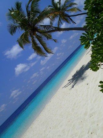 Filitheyo Island Resort : aperçu de la plage