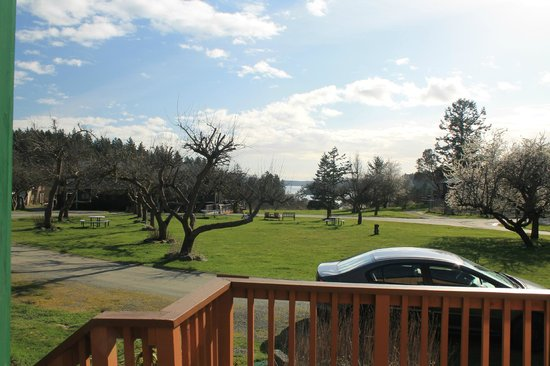 Deer Harbor Inn: view from the cabin