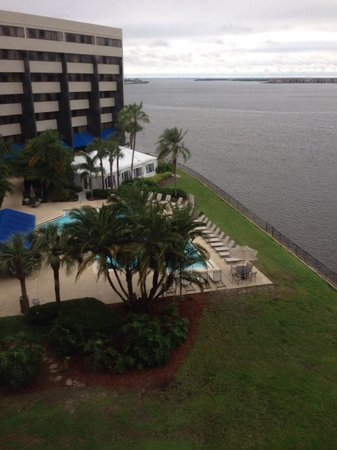 DoubleTree Suites by Hilton Tampa Bay : Room view