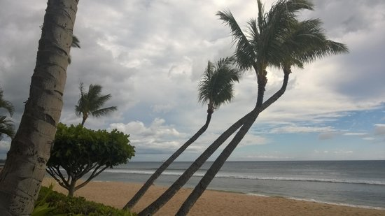 Marriott's Maui Ocean Club  - Lahaina & Napili Towers: View from the hammock.
