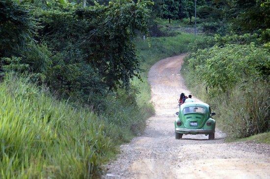 Ecoaldea Kapievi: Road to Kapievi