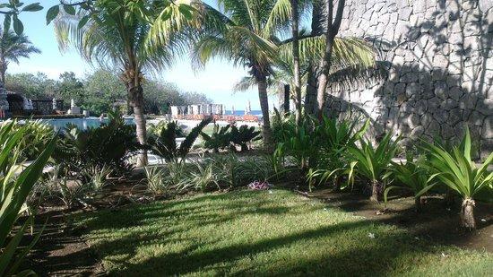 JW Marriott Guanacaste Resort & Spa : Terrasse Zimmer