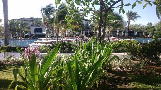 JW Marriott Guanacaste Resort & Spa : Terrasse Pool