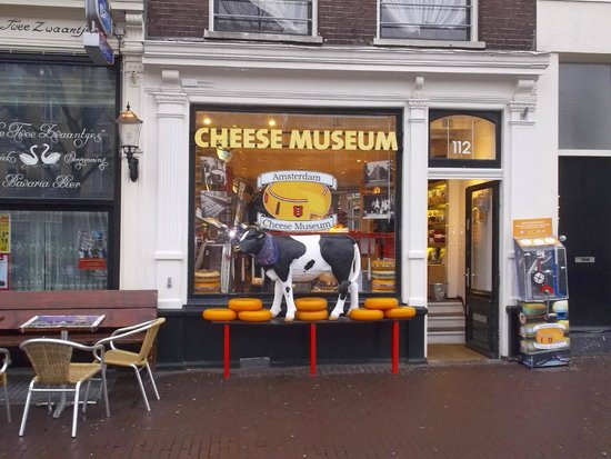 Amsterdam Cheese Museum: there's a cow too!