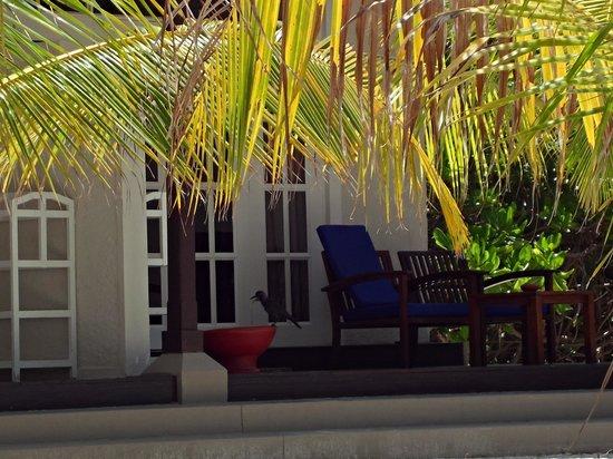 Adaaran Select Hudhuranfushi: exterior