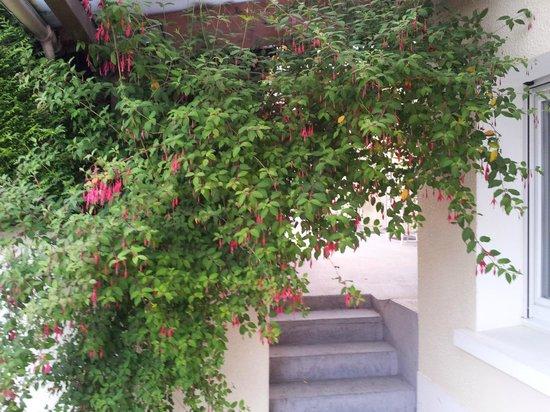 Hotel La Rosiere: Garden area