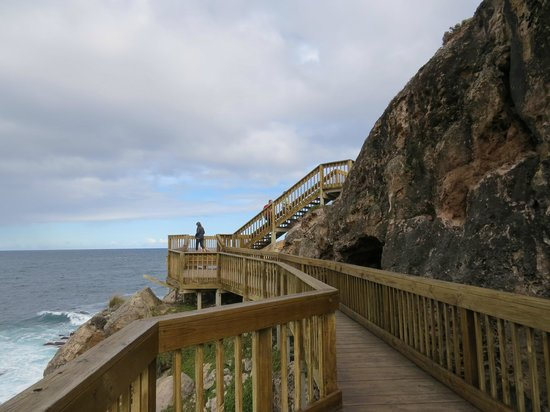 Kangaroo Island Odysseys: Admirals Arch