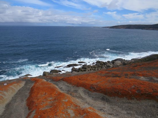 Kangaroo Island Odysseys: From Remarkable Rocks looking to Admirals Arch