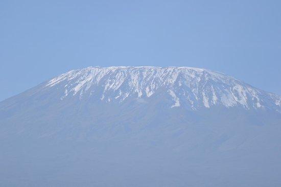 Sentrim Amboseli: il Kibo dalla nostra tenda