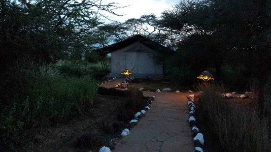 Sentrim Amboseli: la nostra tenda