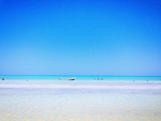 Hotel & Residence Ca'Rita: spiaggia a 50 mt. da Ca'Rita