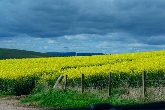 The Creel Inn: Spring in Scotland