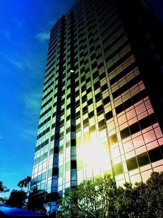 Hilton Los Angeles/Universal City: uitzicht vanaf het zwembadje