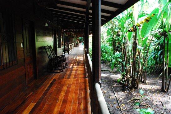 Pachira Lodge: terraza