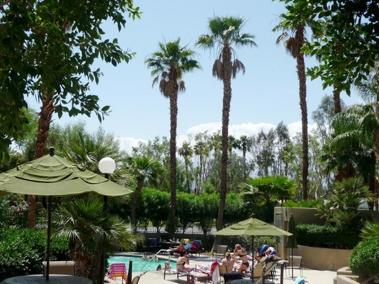 Emerald Desert RV Resort : Main pool and spa