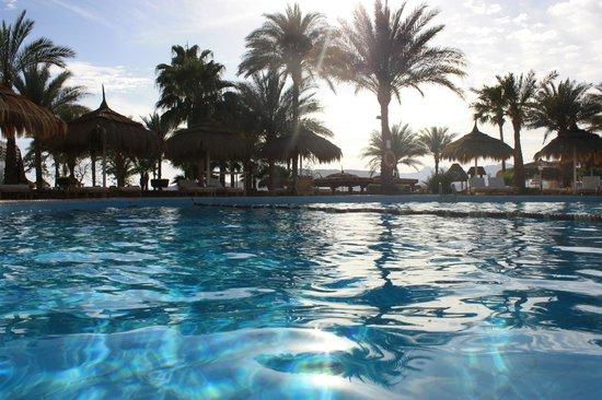 Beach Albatros Sharm: первый бассейн