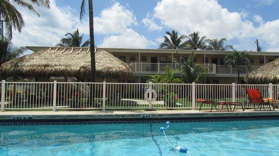 Budget Inn Ocean Resort: Blick vom Pool auf die Zimmer