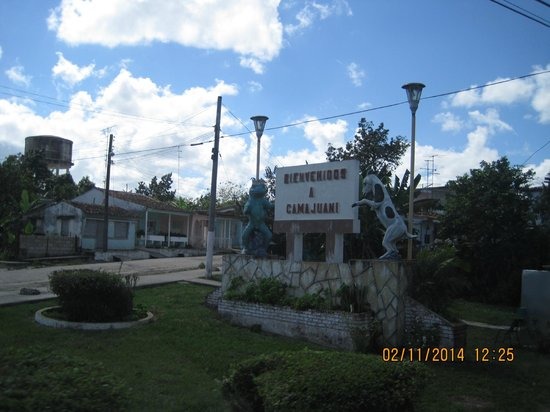 """Memories Paraiso Beach Resort : """"The Crab"""" not so scary to it: was in cement"""