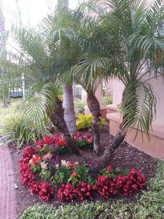 Residence Inn Orlando Lake Mary: Front landscape