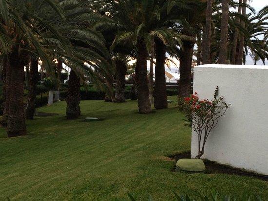 ClubHotel Riu Paraiso Lanzarote Resort : Fine hageanlegg