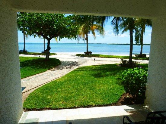 Sunset Marina Resort & Yacht Club: Views