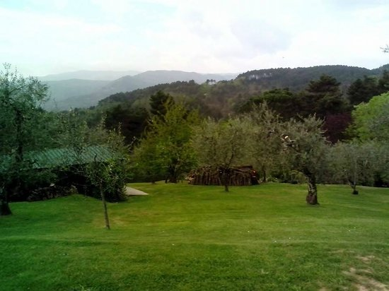 Podere Fioretto : sight from one of the cottages