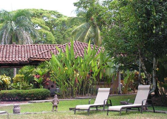 Forest Hills Suites : Vue vers la demeure