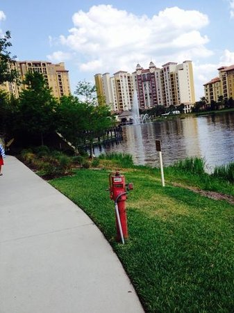 Wyndham Bonnet Creek Resort: nice view