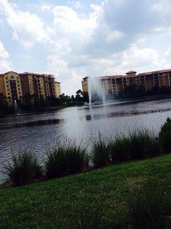 Wyndham Bonnet Creek Resort: view