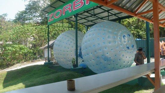 Rollerball Zorbing Phuket: The balls