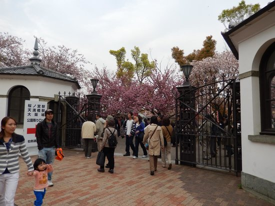 Zohei Museum : Coming up to the entry