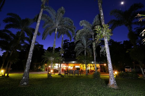 Lync-Haven Rainforest Retreat, Cabins, Camping & Wildlife Experience: lync haven restaurant