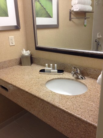 Courtyard Cadillac Miami Beach/Oceanfront : Nice bathroom with granite countertop.
