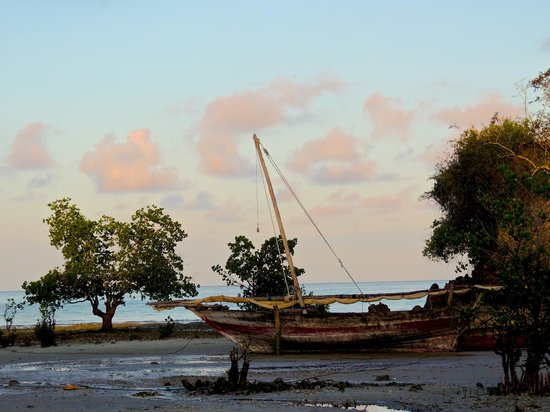 Chuini Zanzibar Beach Lodge : sunrise, low tide