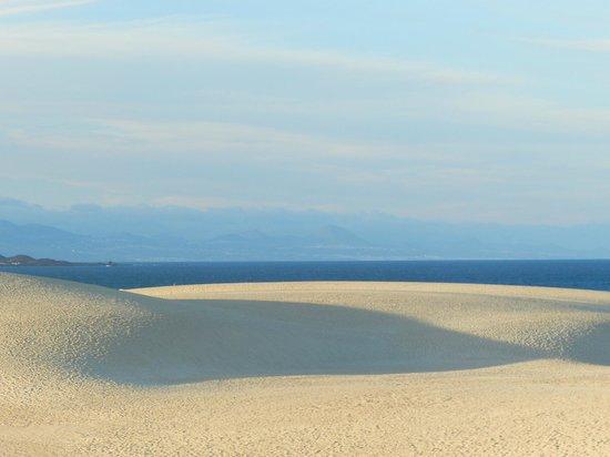 Corralejo Dunes: sahara