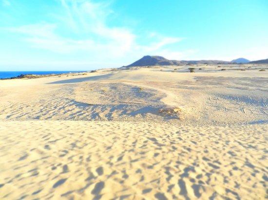 Corralejo Dunes: dunas